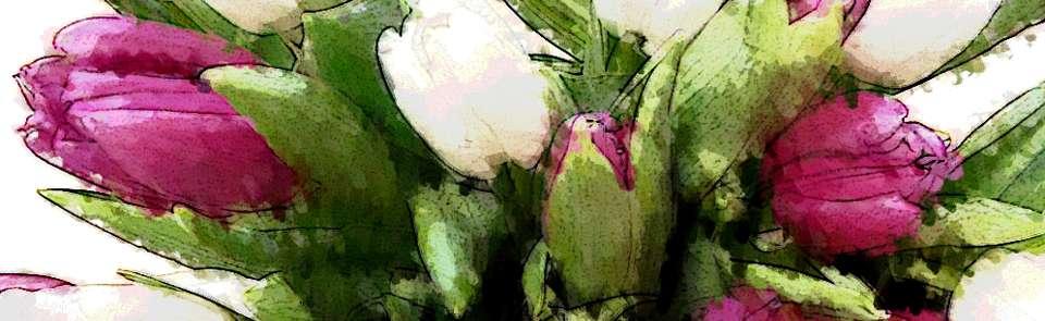Der geheimnisvolle  weiß-lila Tulpenstrauß