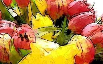 """""""Lass uns das Leben genießen""""- Tulpen"""
