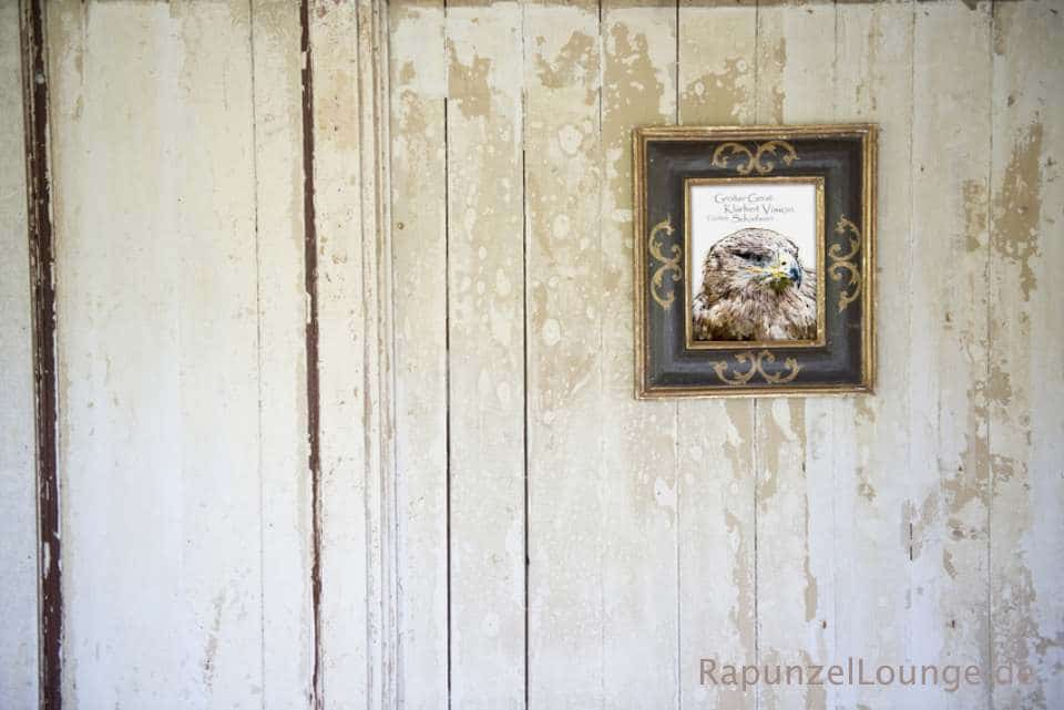 Krafttier Adler Wandbild bei Rapunzel-Lounge