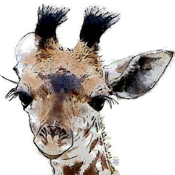 Krafttier Giraffe bei www.rapunzellounge.de