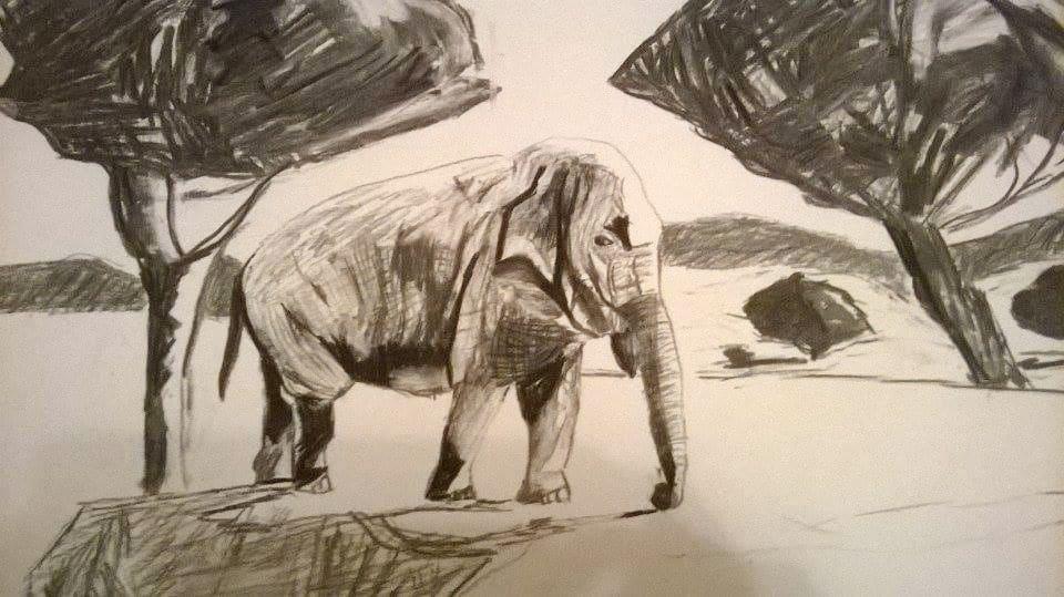 Zeichnung Elefant - rapunzellounge.de