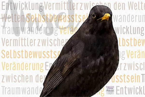 Krafttier AMSEL Wesen bei www.rapunzellounge.de
