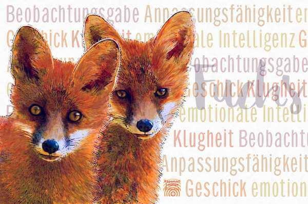 Das Wesen vom Krafttier Fuchs bei www.rapunzellounge.de