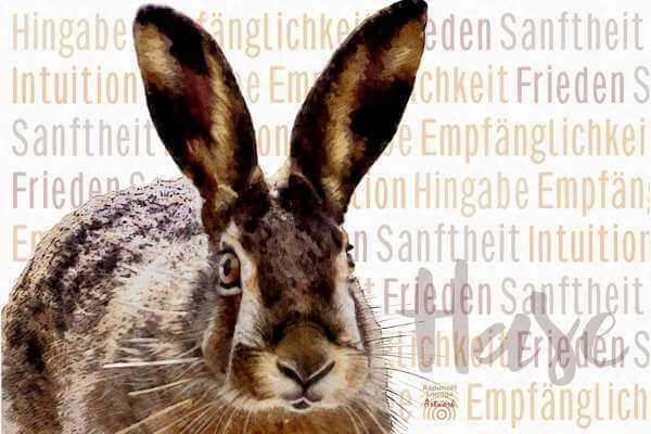 Krafttier HASE Wesen bei www.rapunzellounge.de