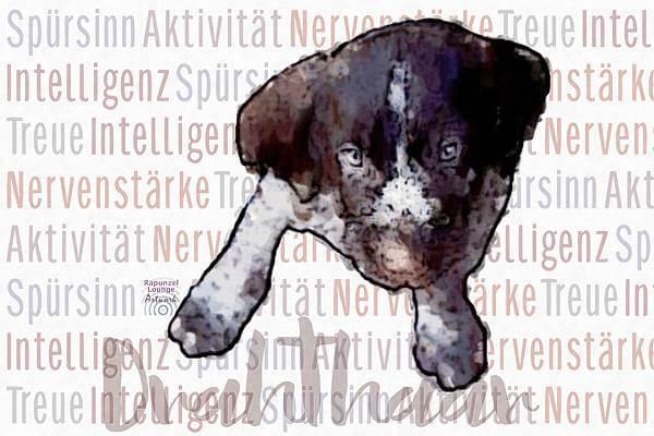Krafttier HUND Deutsch Drahthaar mit Eigenschaften als Poster oder Wandbild