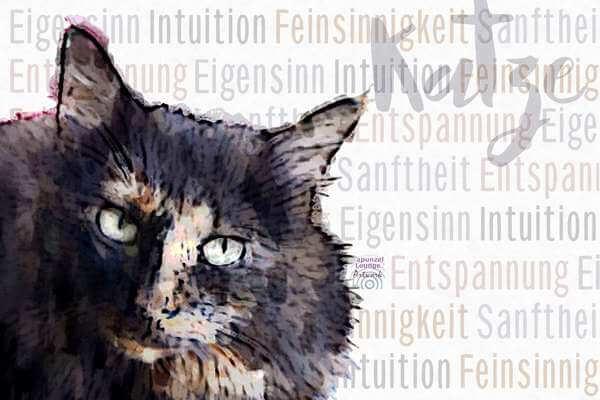 Krafttier Katze langhaar Wesen bei www.rapunzellounge.de