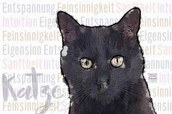 Krafttier Katze schwarz Wesen bei www.rapunzellounge.de