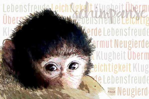 Krafttier AFFE Schimpanse mit Resonanzen als Poster oder Wandbild