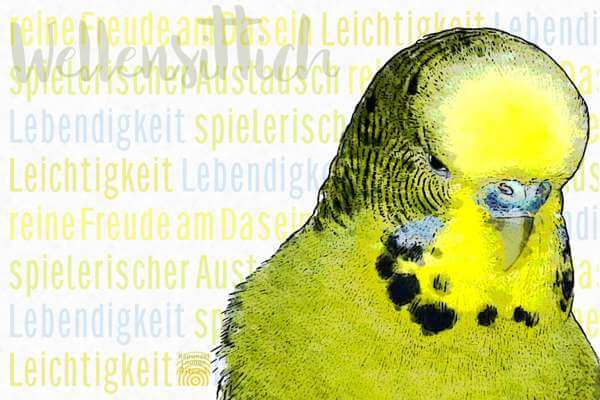 Krafttier WELLENSITTICH mit Resonanzen als Poster oder Wandbild