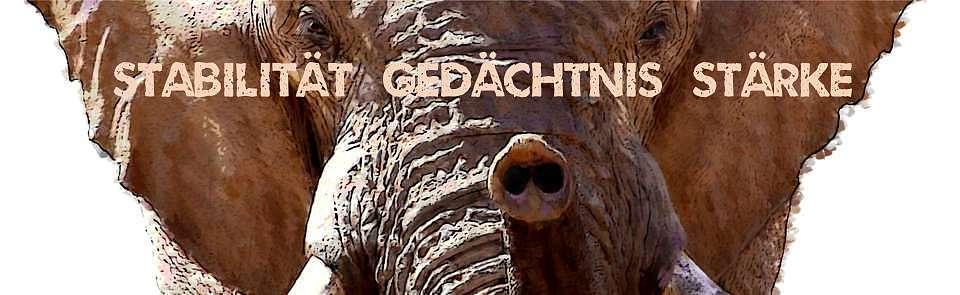 Krafttier Elefant Headerbild