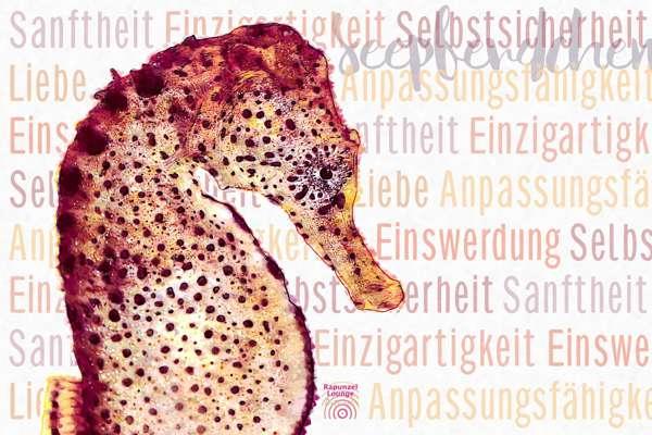 Krafttier SEEPFERDCHEN Wesenszüge bei www.rapunzellounge.de