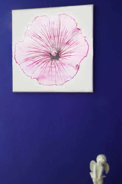 Wandbild Malve Gewinnerbild