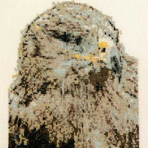 Krafttiere Stickbilder Kreuzstich - Stickbild Krafttier Adler
