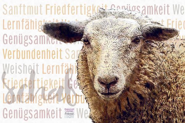 Das Wesen vom Krafttier Schaf