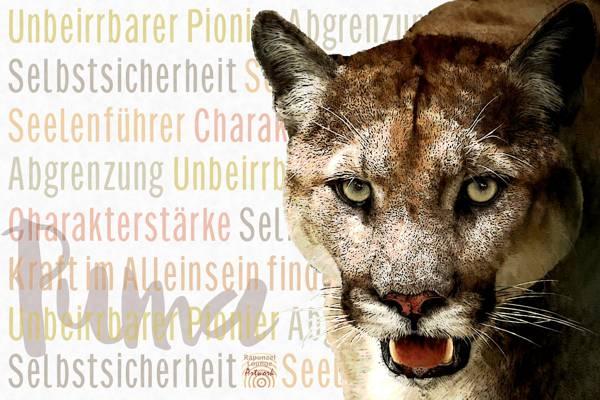 Das Wesen vom Krafttier Puma