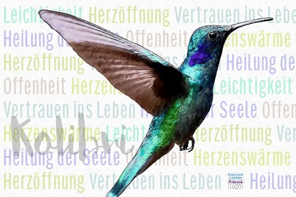 Das Wesen vom Krafttier Kolibri