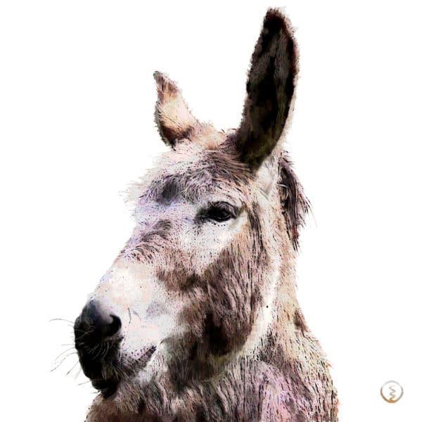 Krafttier Esel Wandbild