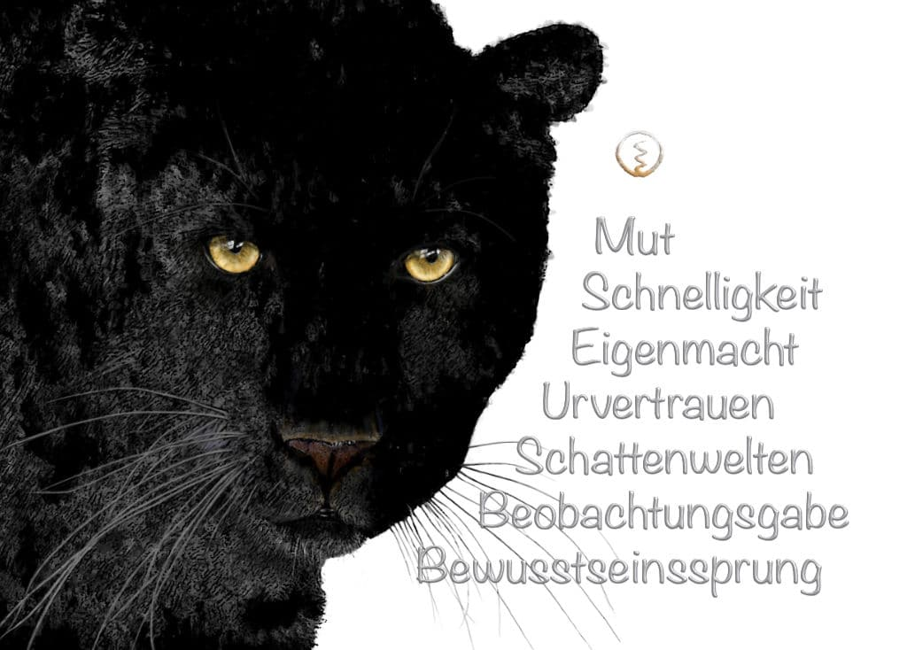 Krafttier schwarzer Panther Kraftbild
