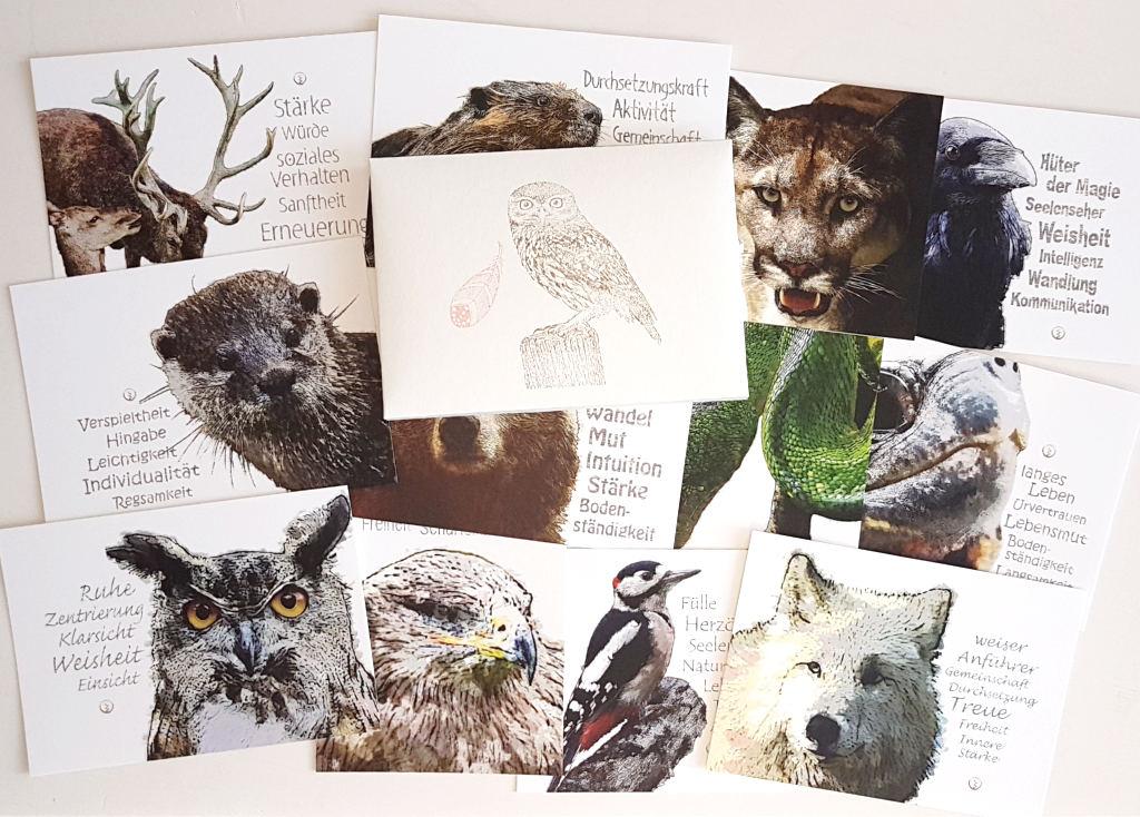 schamanische krafttiere 12er postkarten set