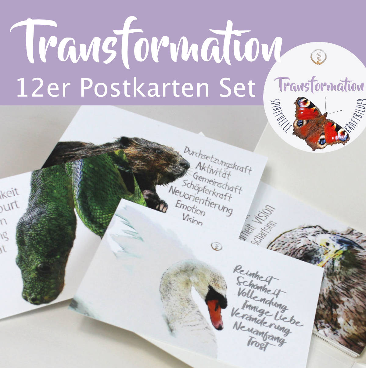 transformation postkarten set